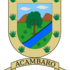 Arbolado Urbano del Municipio de Acámbaro, Guanajuato. icon