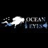 Ocean Eyes Chile icon