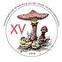 XVth Macromycetes Workshop in Tomsk icon