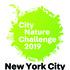 City Nature Challenge 2019: New York City icon