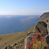 Baikal Siberia biodiversity icon