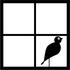 University of Utah Bird Window Collision Project icon