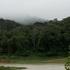 Biodiversidade dos Brejos de Altitude / Caatinga moist-forest enclaves biodiversity icon