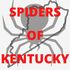 Spiders of Kentucky icon