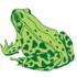Амфибии и рептилии Поволжья | Amphibia and reptilia of the Volga region icon