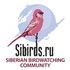 Siberian Big Garden Birdwatch - 2019 icon