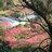 陽明山國家公園觀察紀錄 icon