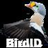 BirdID-Morocco-non-birds icon