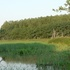 """Biodiversity of """"Altopiano di Poirino"""" ponds icon"""
