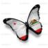 Lepidoptera of California icon