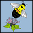 BACKYARD BUMBLE BEE COUNT icon