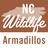NC Armadillo icon