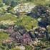 Intertidal Biodiversity on East Coast of India icon