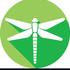 Dragonflies and Damselflies of Northwestern Ontario icon