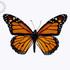 Nebraska Butterflies icon