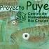 Proyecto puye icon