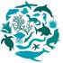Tiburones y Rayas de Venezuela (registros 'Grado de investigación') icon