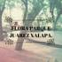 Flora Parque Juarez Xalapa icon