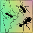 Hormigas de Nuevo León icon