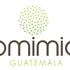 Bioblitz of the Americas - Guatemala 2016 icon