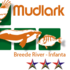 Mudlark's Biodiversity icon