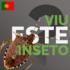 Percevejo asiático (Halyomorpha halys) PT icon