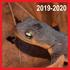 Pacific Newts (Dead, 2019-2020) - Lexington Reservoir icon