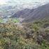 Biodiversidad Rio Magdalena icon