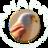 ANAPRI - Asociación Naturalista Primilla icon