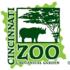 Cincinnati Zoo Family Community Service Backyard BioBlitz icon