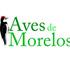 Aves de Morelos icon