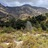 The Eaton Canyon Biodiversity Project icon