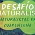 Naturalistas en Cuarentena icon