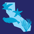 Duxbury Reef South Bioblitz icon