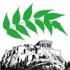 Ailanthus altissima in the Acropolis icon