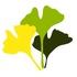 中国野生植物 icon