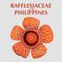 Rafflesia of the Philippines icon