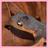 81876 icon thumb