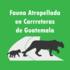 Fauna Atropellada en Carreteras de Guatemala icon