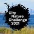 City Nature Challenge 2021: Chicago Metro icon