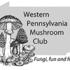 WPMC Fall Mushroom BINGO 2020 icon
