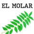 Ailantos en El Molar icon