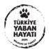Türkiye Yaban Hayatı icon