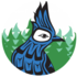 CTS Team - iNaturalist Holiday Pilot Project icon