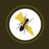 Hormigas de Sinaloa icon