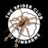 Spiders of Zimbabwe icon