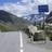 Noctuidae - above 2000m in the Swiss Alps icon