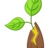 Wild Seed Plant Tracker icon
