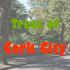 Trees of Cork City icon