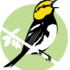 Austin Bird-Building Collisions icon